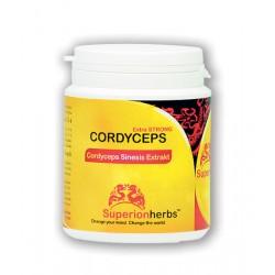 Cordyceps, Extrakt 40% polysacharidů, 15% manitolu